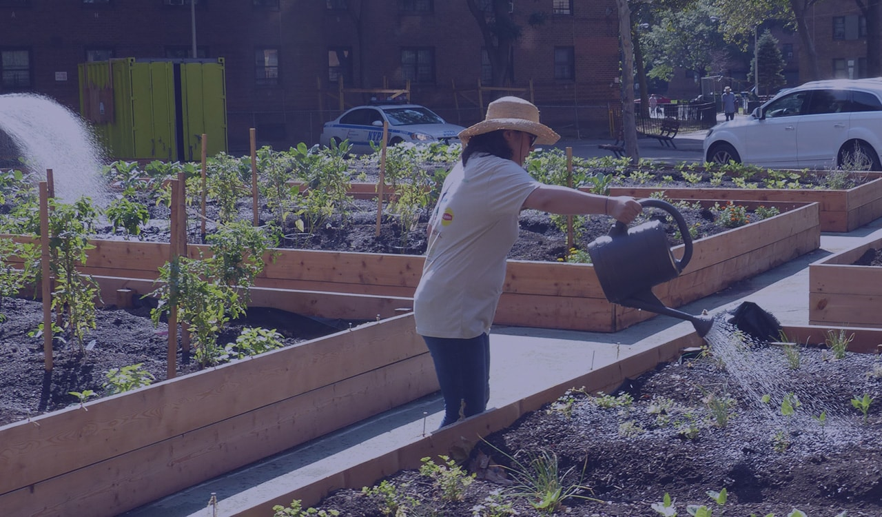WAIT, WHAT IS COMMUNITY GARDENING?